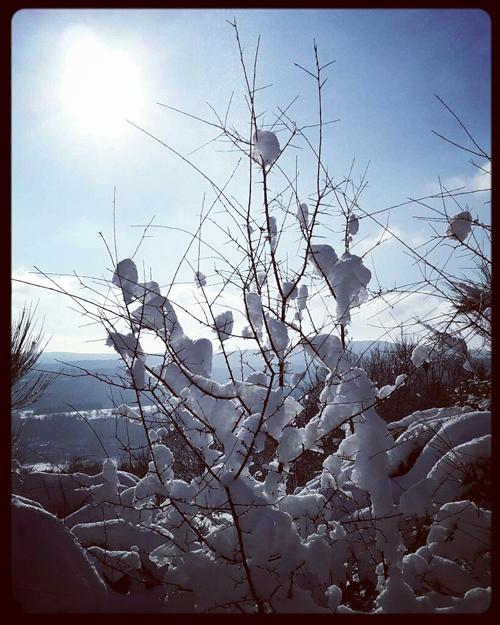 winter-schnee